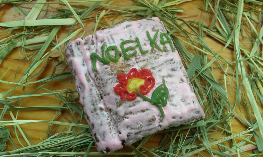 gp-noelka-tosi