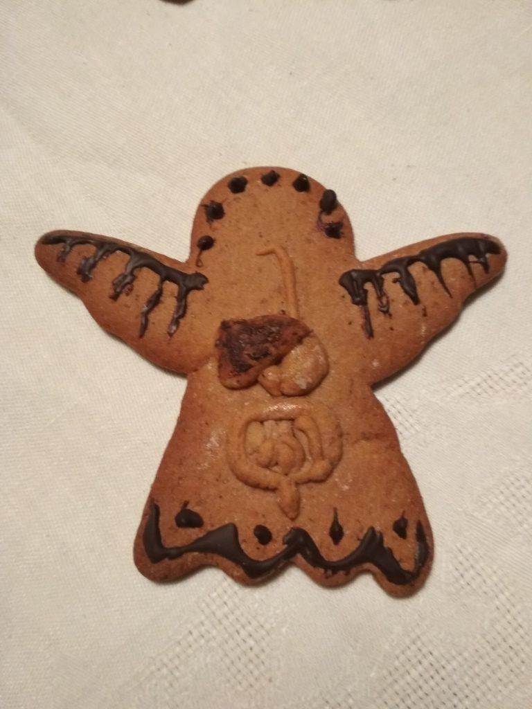 Psianka anioł anatom 1