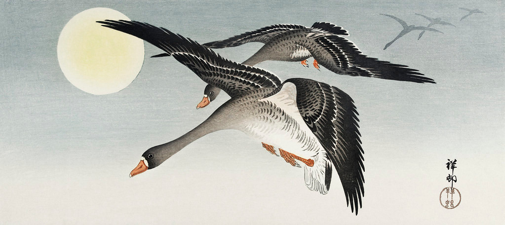 Birds at full moon (1900 - 1936) by Ohara Koson (1877-1945). Original from The Rijksmuseum. Digitally enhanced by rawpixel.