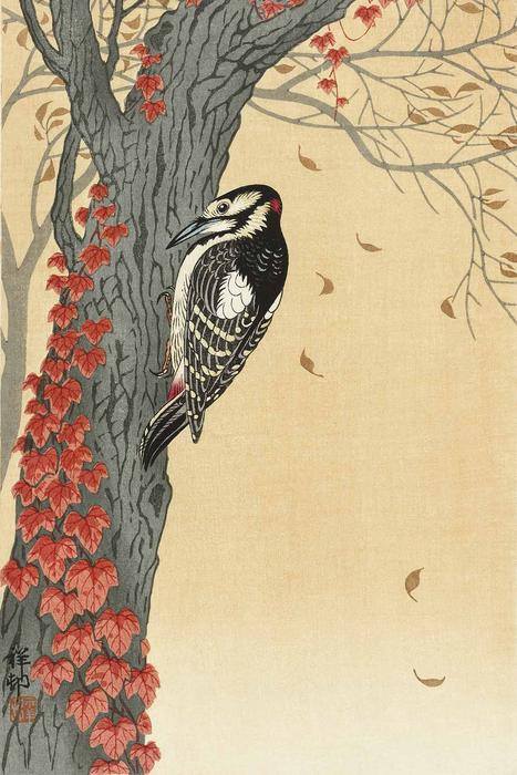 Great spotted woodpecker in tree with red ivy (1925 - 1936) by Ohara Koson (1877-1945). Original from The Rijksmuseum. Digitally enhanced by rawpixel.