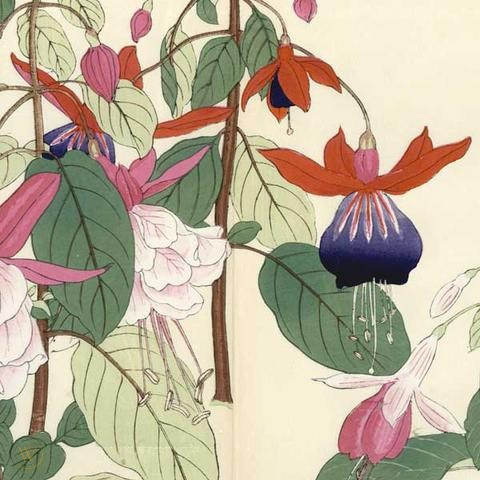 original-1880s-flower-barei-japanese-woodblock_1_dcf74cf71b668c039bbeaecb1f1bec87