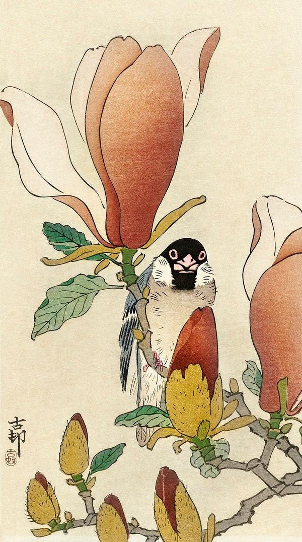 wróbel na kwiat magnolii Ohara Koson